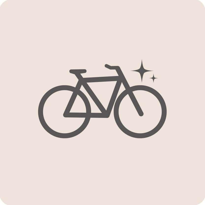 FUSL - Fett und Schmutz löser / Universalreiniger für das Fahrrad
