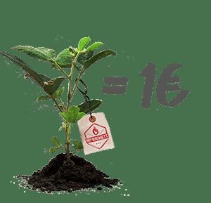 Mit McBrikett Bäume pflanzen