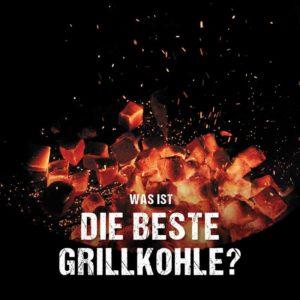 Grillkohle Holzkohle Briketts